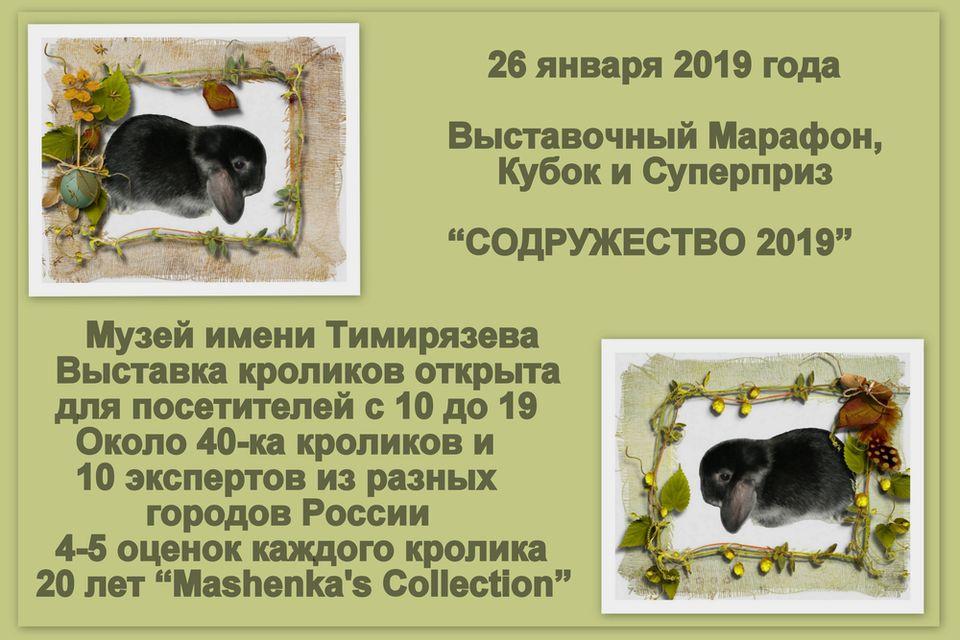 Выставочный Марафон, Кубок и Суперприз